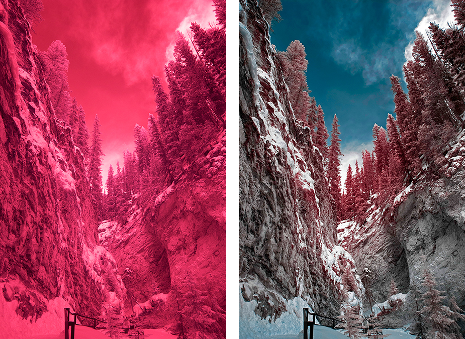 IR image pre-processed (left) and post-processed to false color (right)